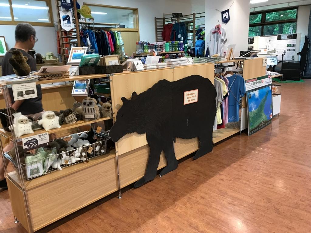 北海道 知床 知床自然センター 実物大クマ看板