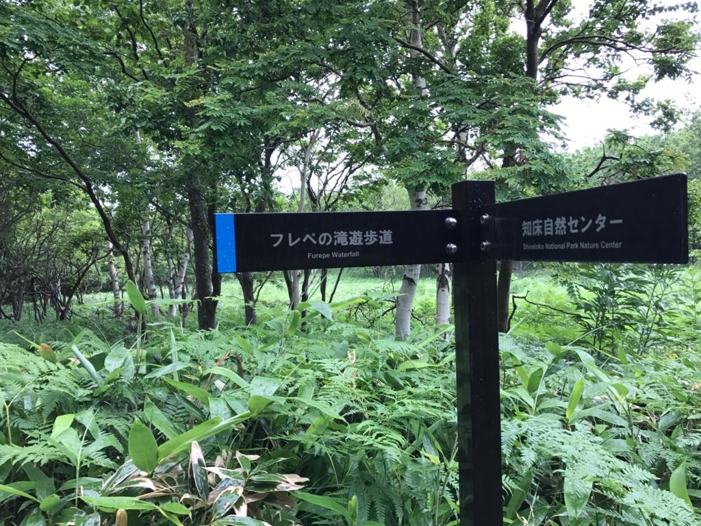 北海道 知床 知床自然センター 横 フレペの滝への看板
