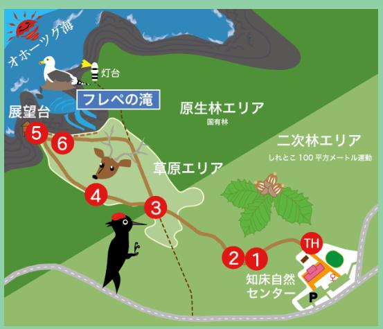 北海道 知床 フレペの滝 案内図 by www.shiretoko-trail.com