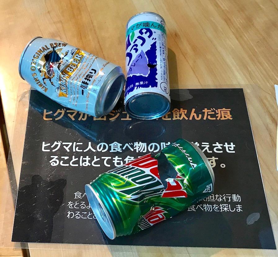 北海道 羅臼ビジターセンター 展示品 クマの飲んだ缶ジュース