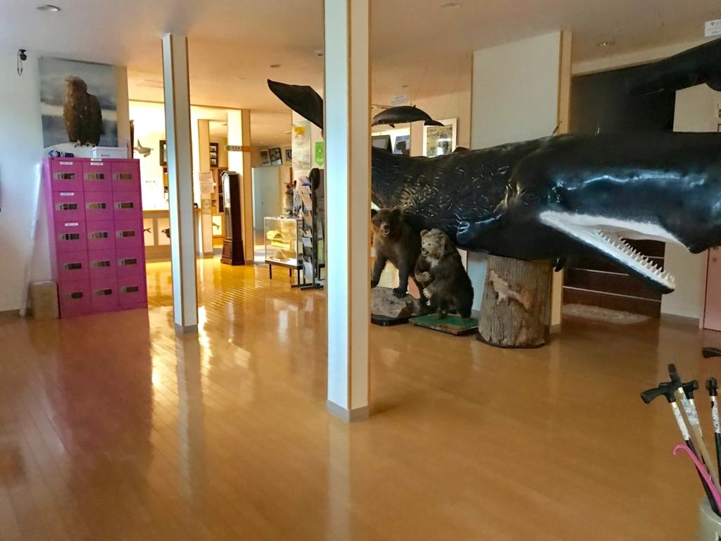 北海道 羅臼 「羅臼の宿 まるみ」入ると クジラとクマの置物