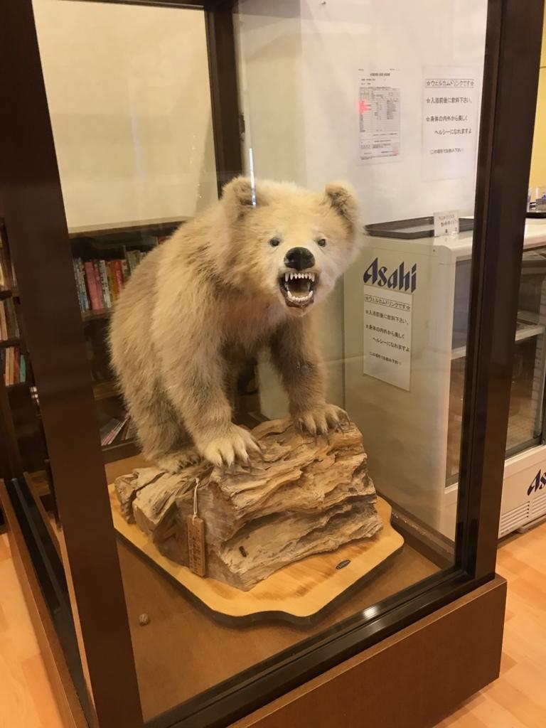 北海道 羅臼 「羅臼の宿 まるみ」白いヒグマの剥製