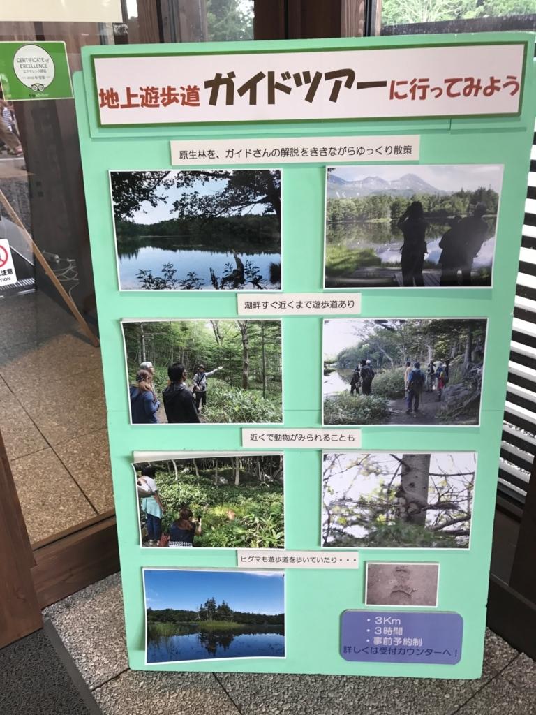 北海道 知床五湖 「地上遊歩道ガイドツアーに参加しよう」