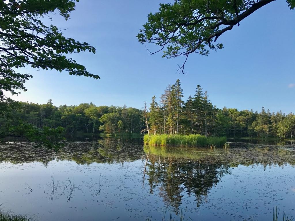 北海道 知床 三湖 後半