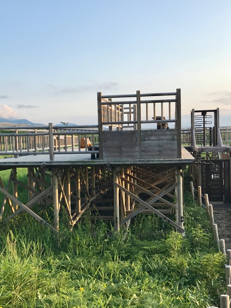 北海道 知床五湖 地上遊歩道から高架木道へ
