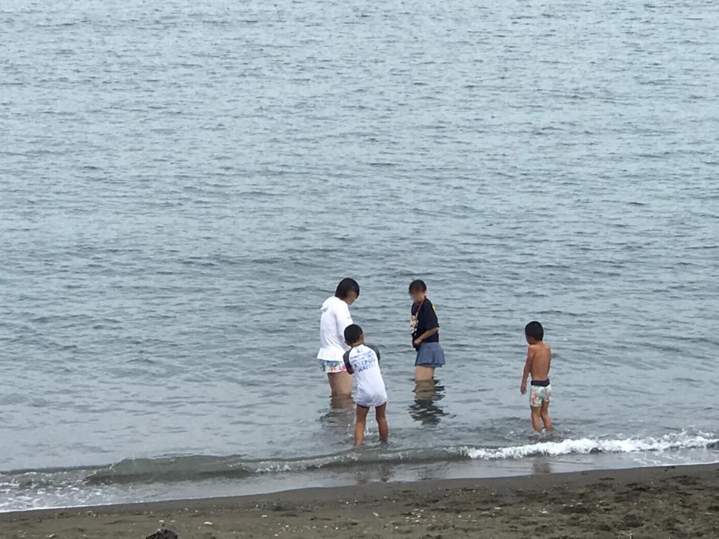 千葉県 内房 勝山海岸 8月中旬 海水浴客