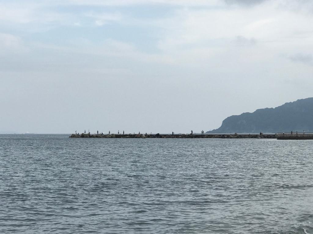 千葉県 内房 勝山海岸 8月中旬 釣り人
