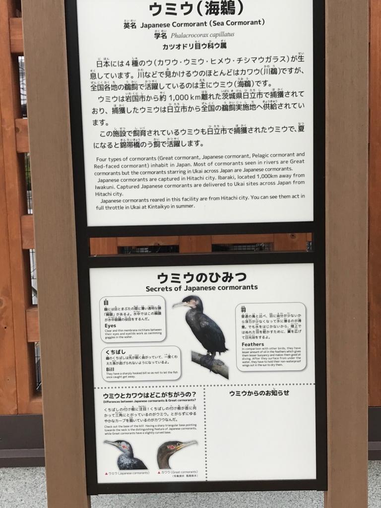 山口県 岩国 「吉香公園」吉香 鵜の里 鵜の説明板