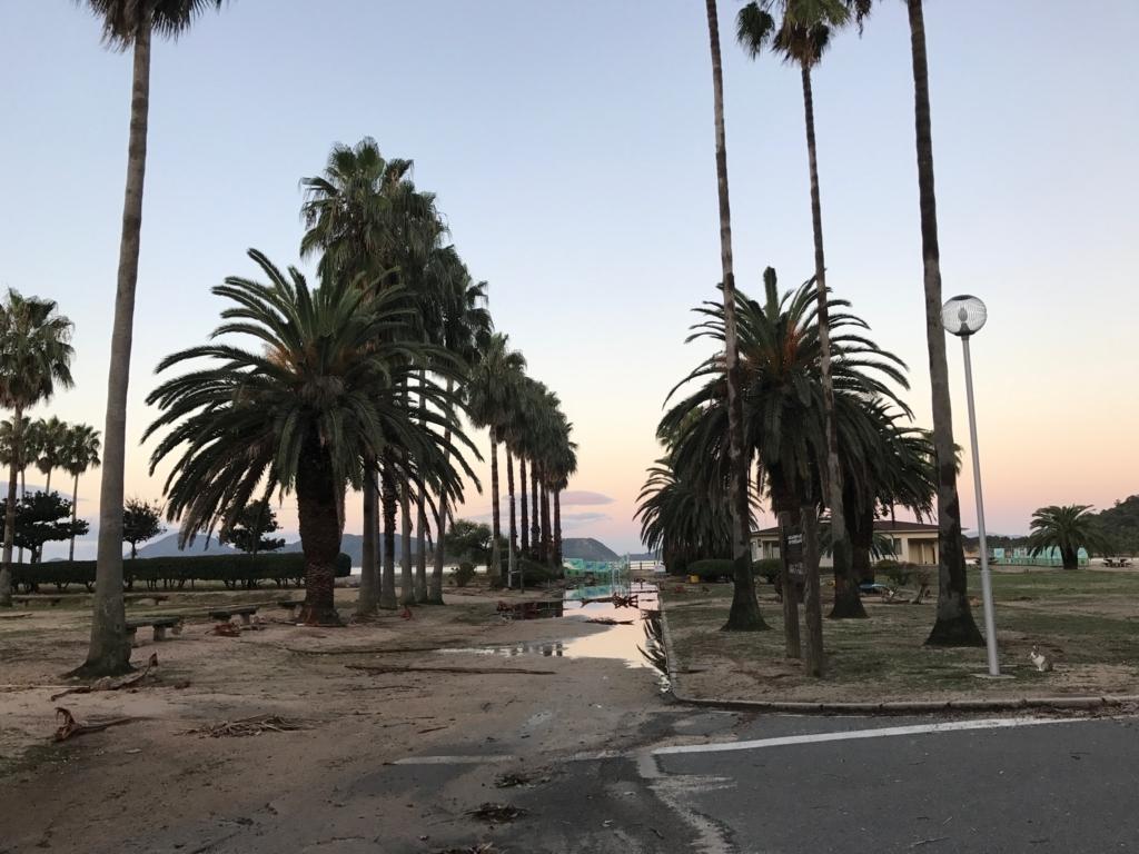 広島県 うさぎ島(大久島)台風18号が去った早朝 休暇村広場