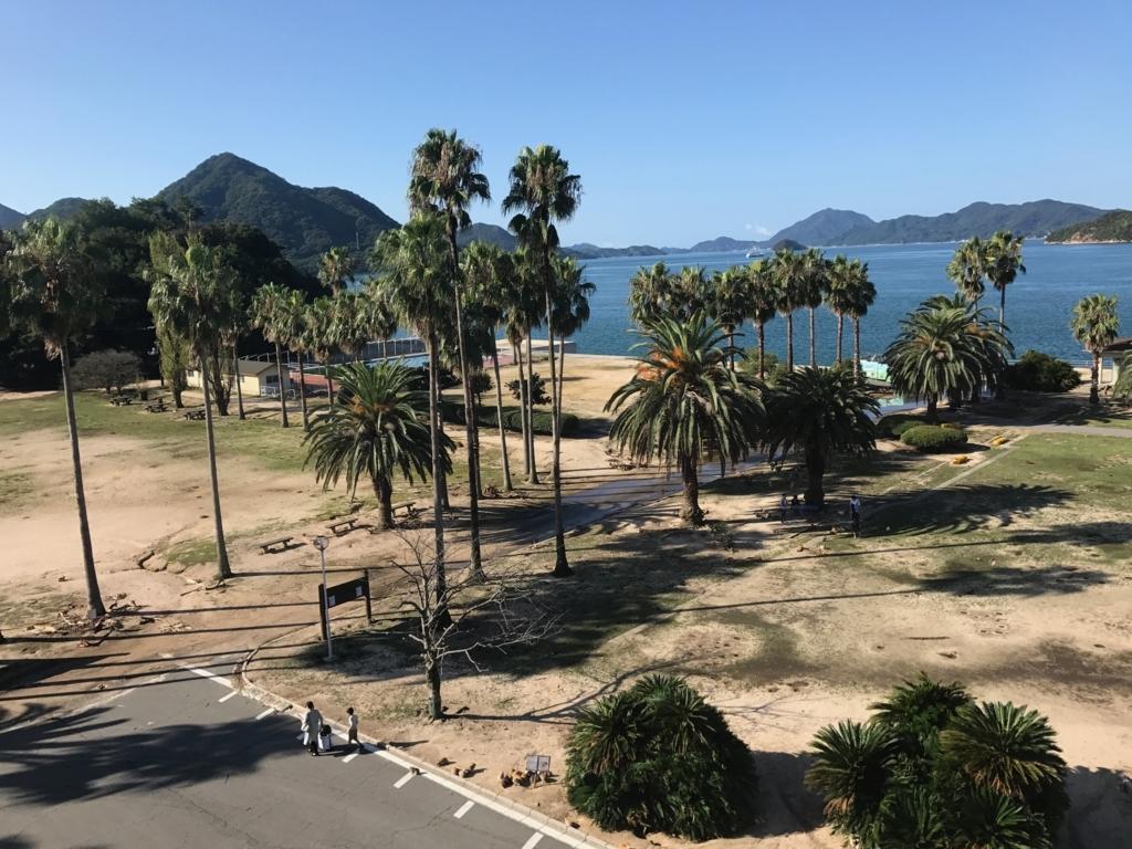 広島県 うさぎ島(大久島)台風18号が去った朝 水が引いた広場