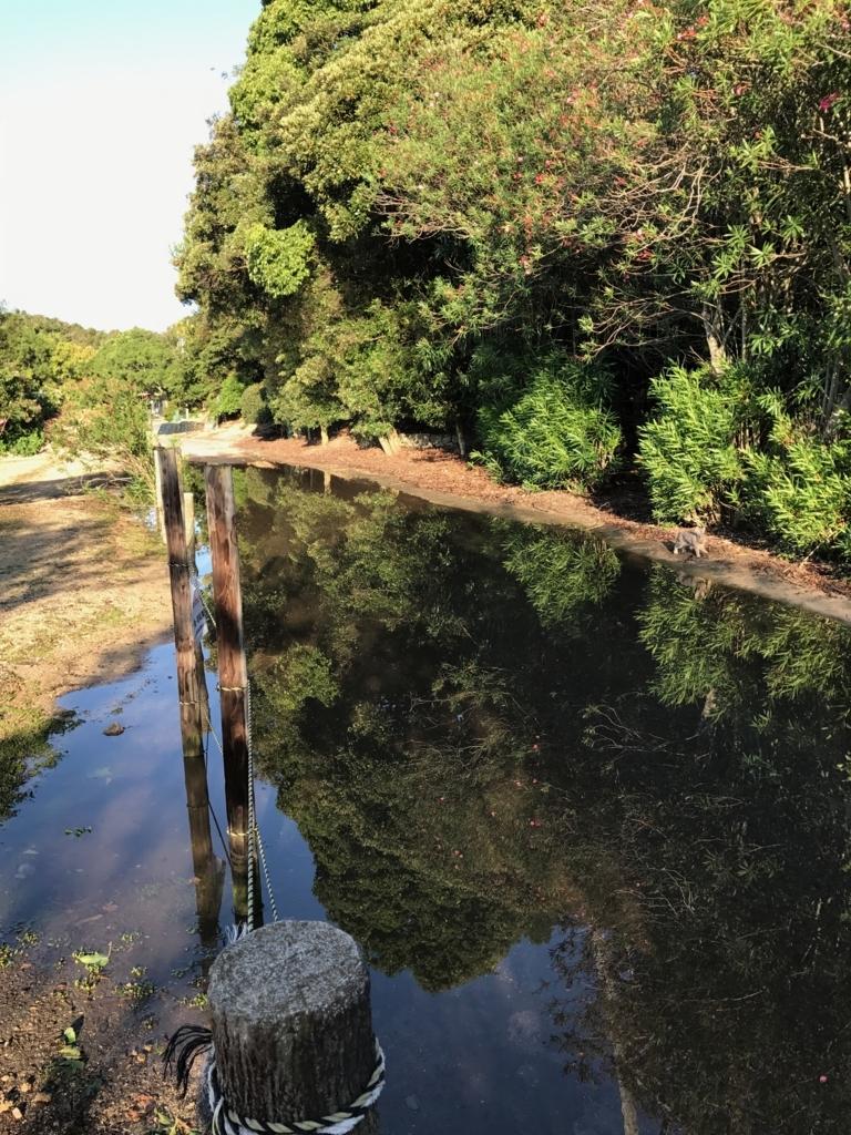 広島県 うさぎ島(大久島)台風18号の後 水没した道路