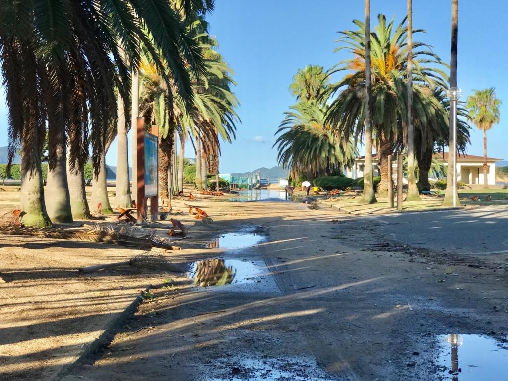 広島県 うさぎ島(大久島)台風18号の後 休暇村広場を片付けるスタッフさん達