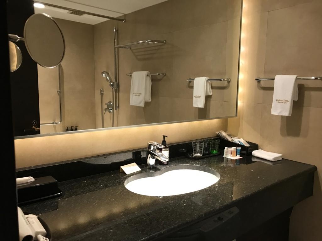 妙高高原 赤倉温泉 「赤倉観光ホテル」本館洋室 シンクまわり
