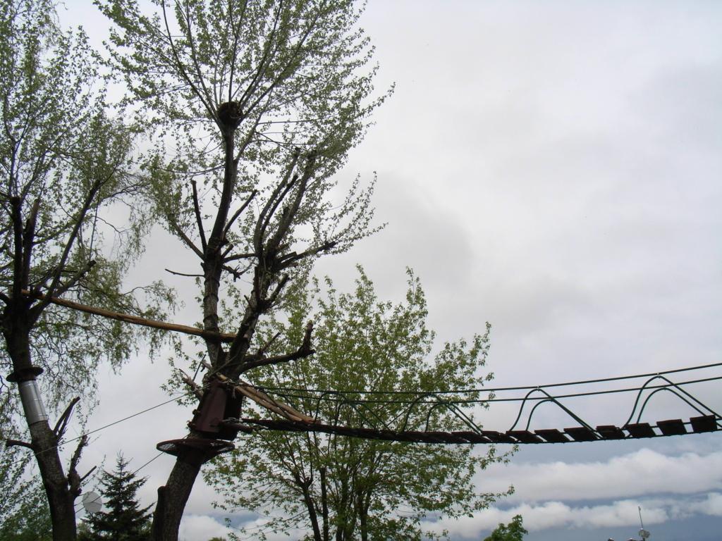 2010年5月 北海道 旭山動物園 レッサーパンダ舎 道をはさんで 間は吊り橋