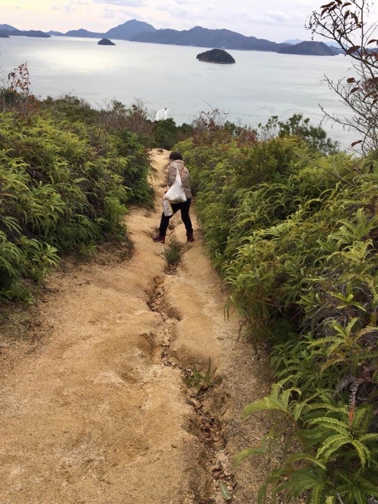 広島県 大久野島(うさぎ島) 展望台からの 険しい道