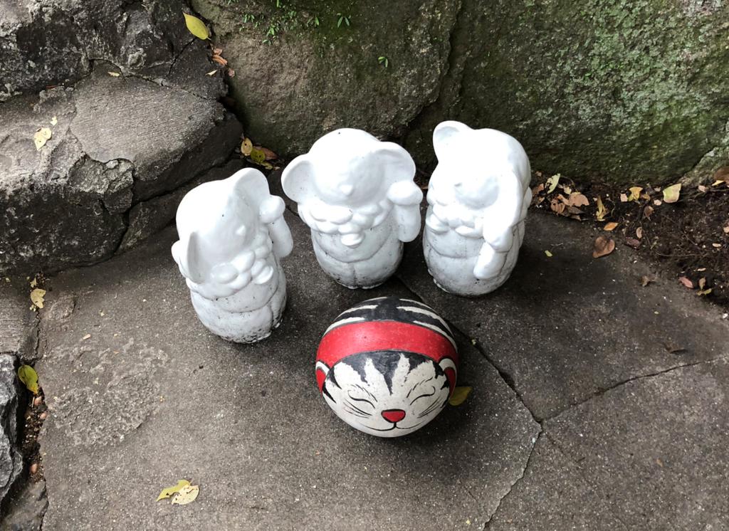 広島県 尾道 「猫の細道」