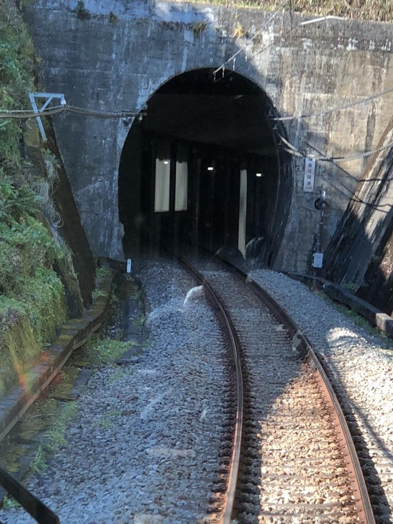 西武鉄道『西武 旅するレストラン「52席の至福」』車窓 単線 トンネル