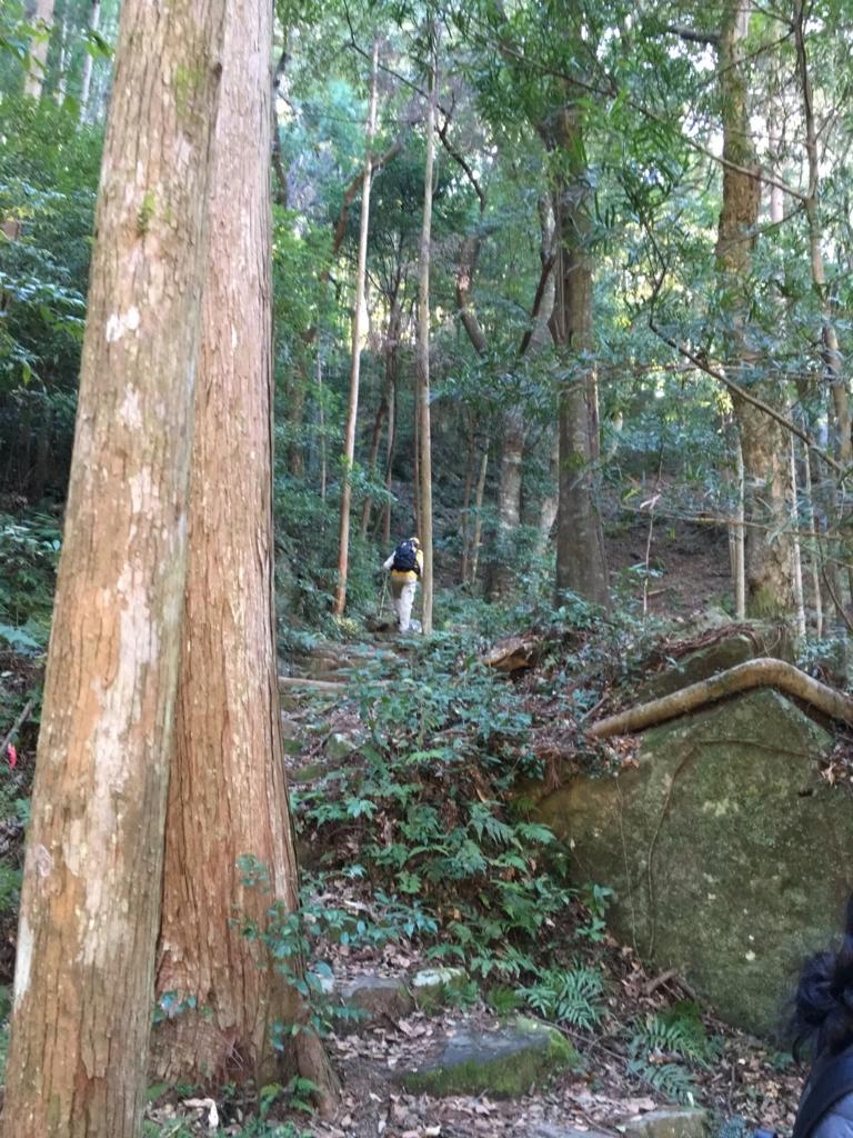 熊野古道「滝尻王子」中辺路 古道らしい路への入り口