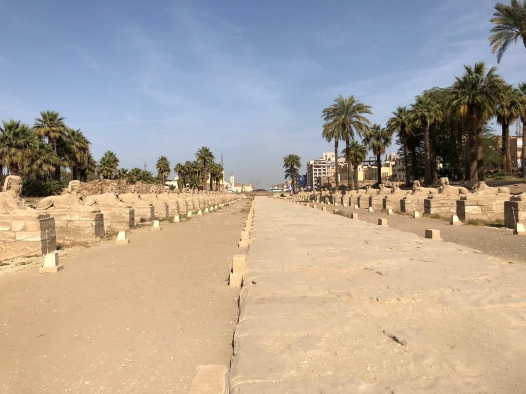 エジプト ルクソール ルクソール神殿 続いているスフィンクスの参道