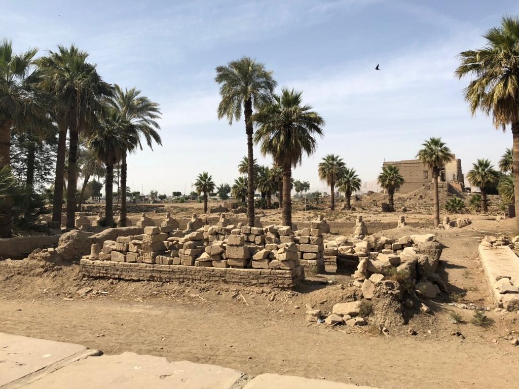 エジプト ルクソール ルクソール神殿近く 発掘中 スフィンクスの参道