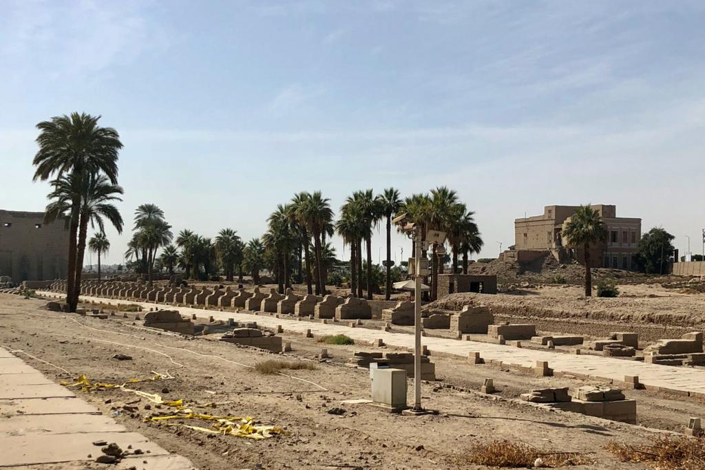 エジプト ルクソール ルクソール神殿近く 長いスフィンクスの参道