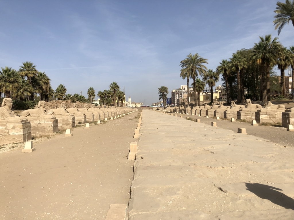 エジプト ルクソール東岸 ルクソール神殿 スフィンクスの参道