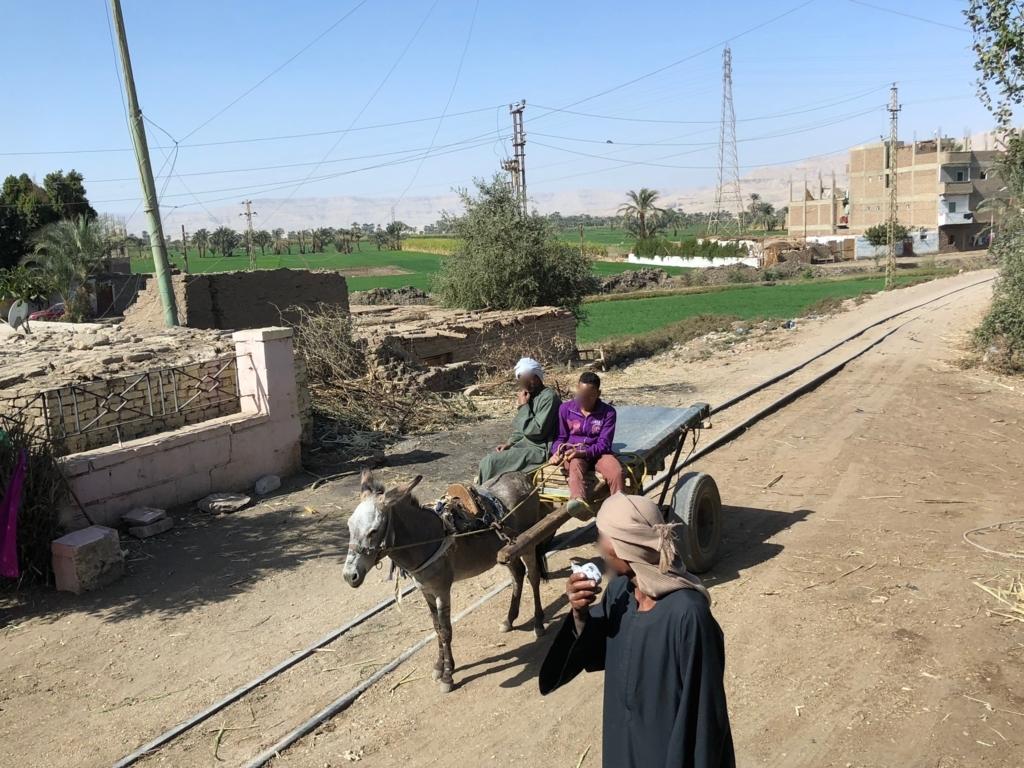 エジプト ルクソール 西岸 さとうきび 運搬用の線路