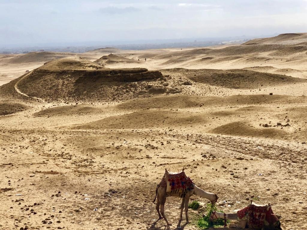 エジプト ギザ 3大ピラミッド「パノラマポイント」 周囲の風景風景