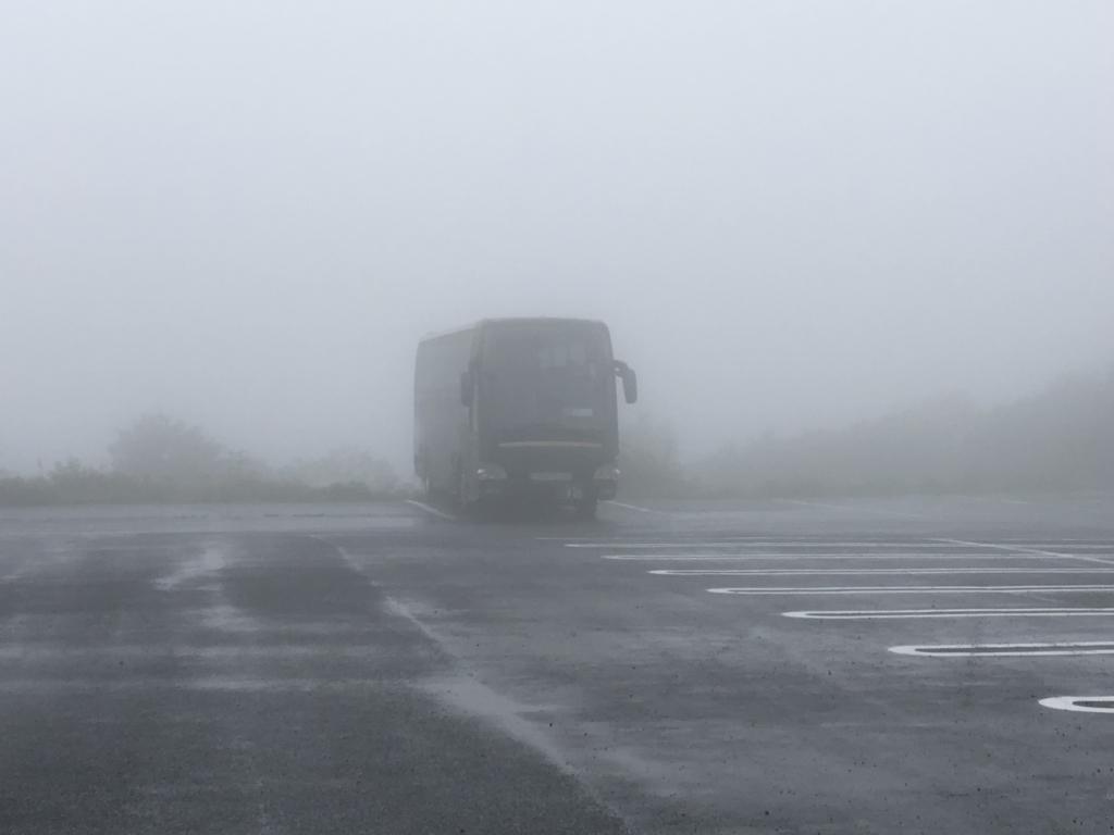 豪雨の中「国営ひたちなか海浜公園」へ 昼食後 靄...
