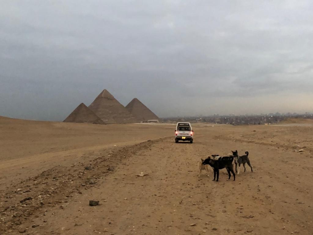 エジプト ギザ 3大ピラミッド 夜明け近く 車に先導されて セカンドパノラマへ