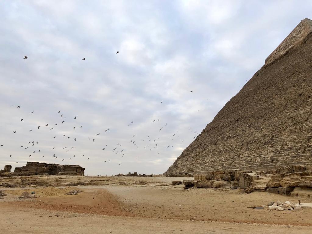 エジプト ギザ カフラー王のピラミッド 開場前 朝日鑑賞帰り道 一斉に飛び立つ鳩達