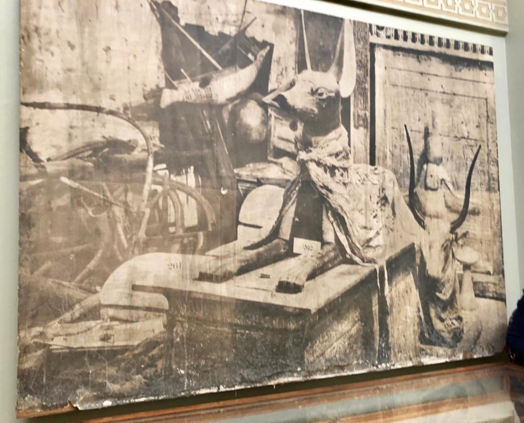 エジプト カイロ 「エジプト考古学博物館」ツタンカーメン アヌビス神の厨子 発掘当時の写真