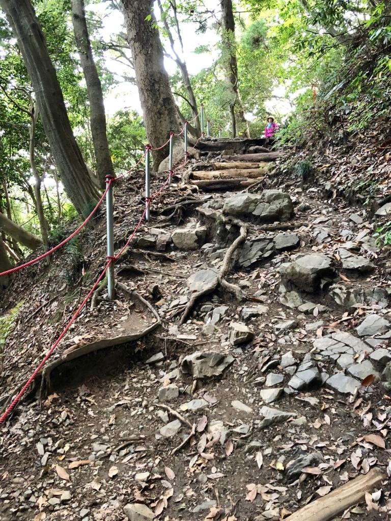 2018年5月 高尾山 6号路 岩が... 木の根が... 路が崩れて... 毛虫が...