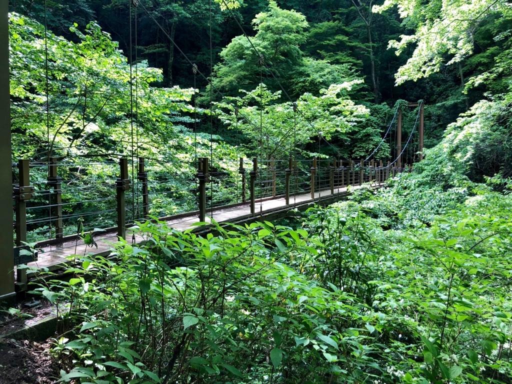 2018年5月 高尾山 4号路 吊り橋