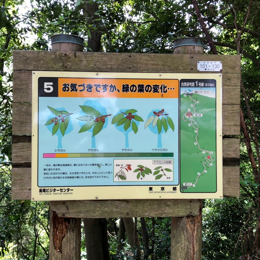 2018年5月 高尾山 一号路 自然研究看板 「お気づきですか、緑の葉の変化・・・」
