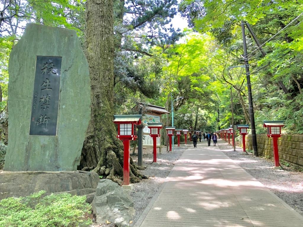 2018年5月 高尾山 「浄心門」の先の 参道 と 殺生禁断」の碑