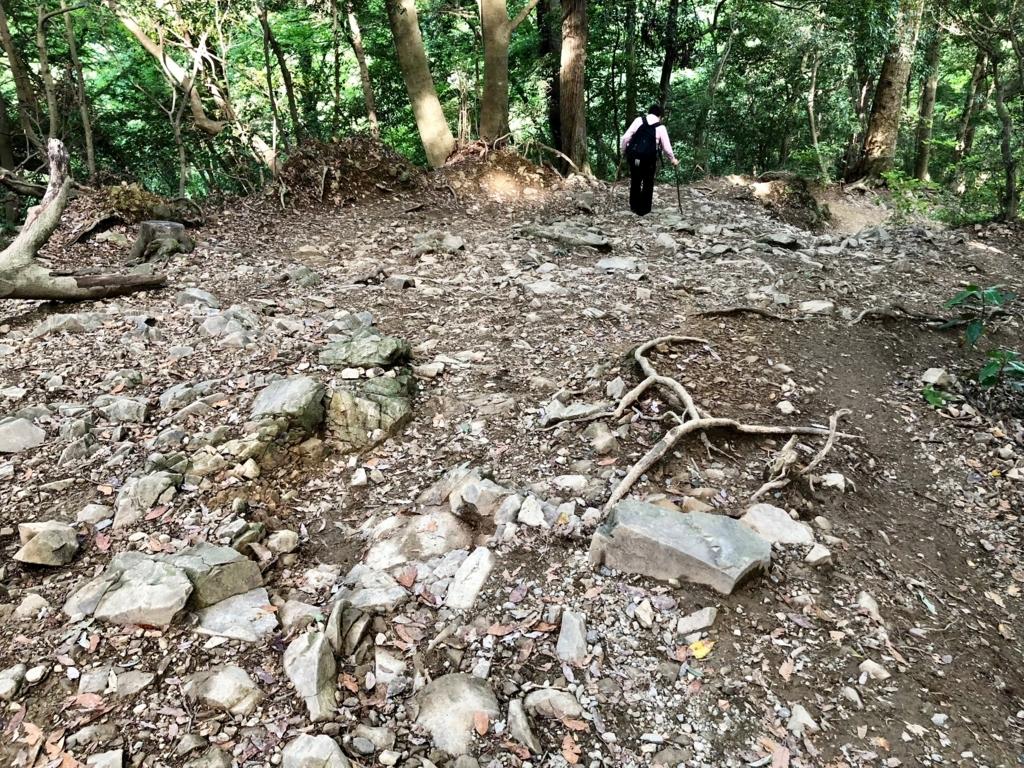 2018年5月 高尾山 2号路でない!! もう階段でもなくなる... 岩ゴロゴロの坂道