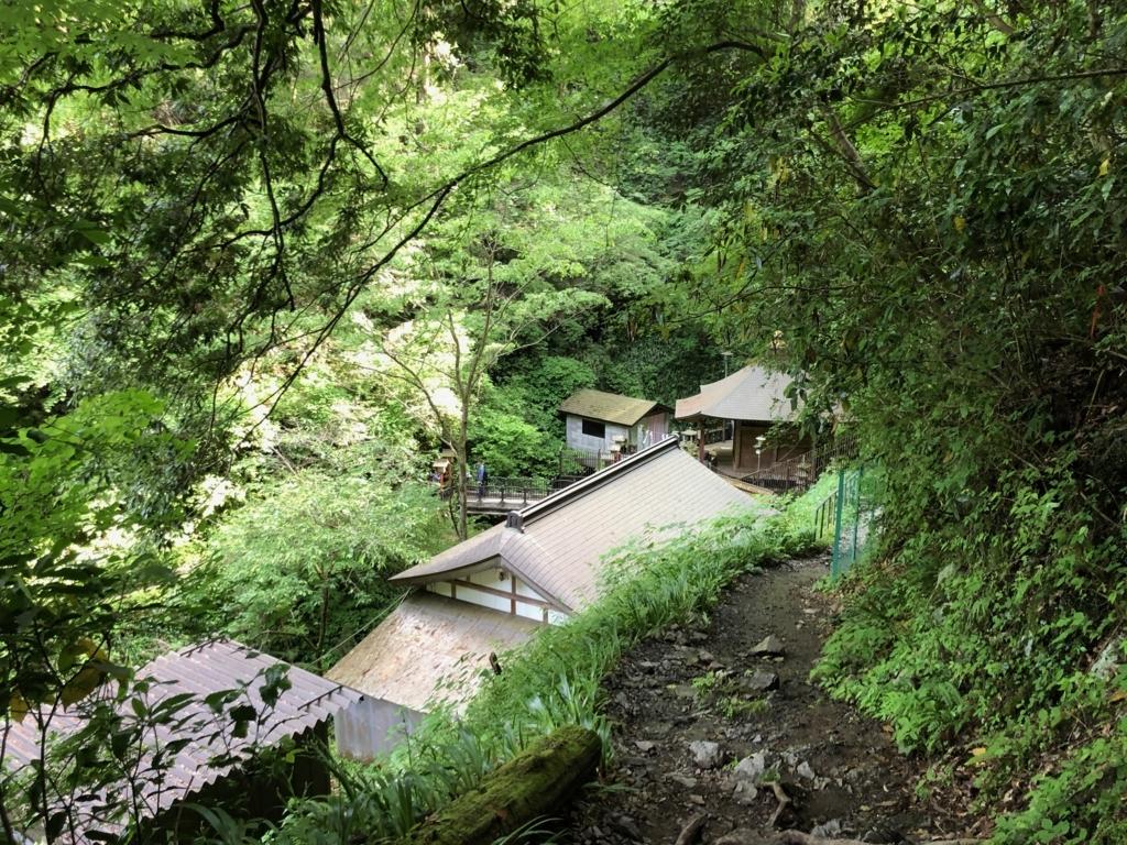 2018年5月 高尾山 2号路入り口から 40分、悪路が終わって、家が...毛虫が...