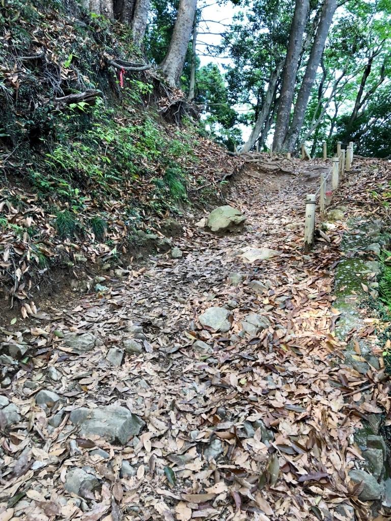 2018年5月 高尾山 2号路でない!! 落ち葉で路が埋もれてる