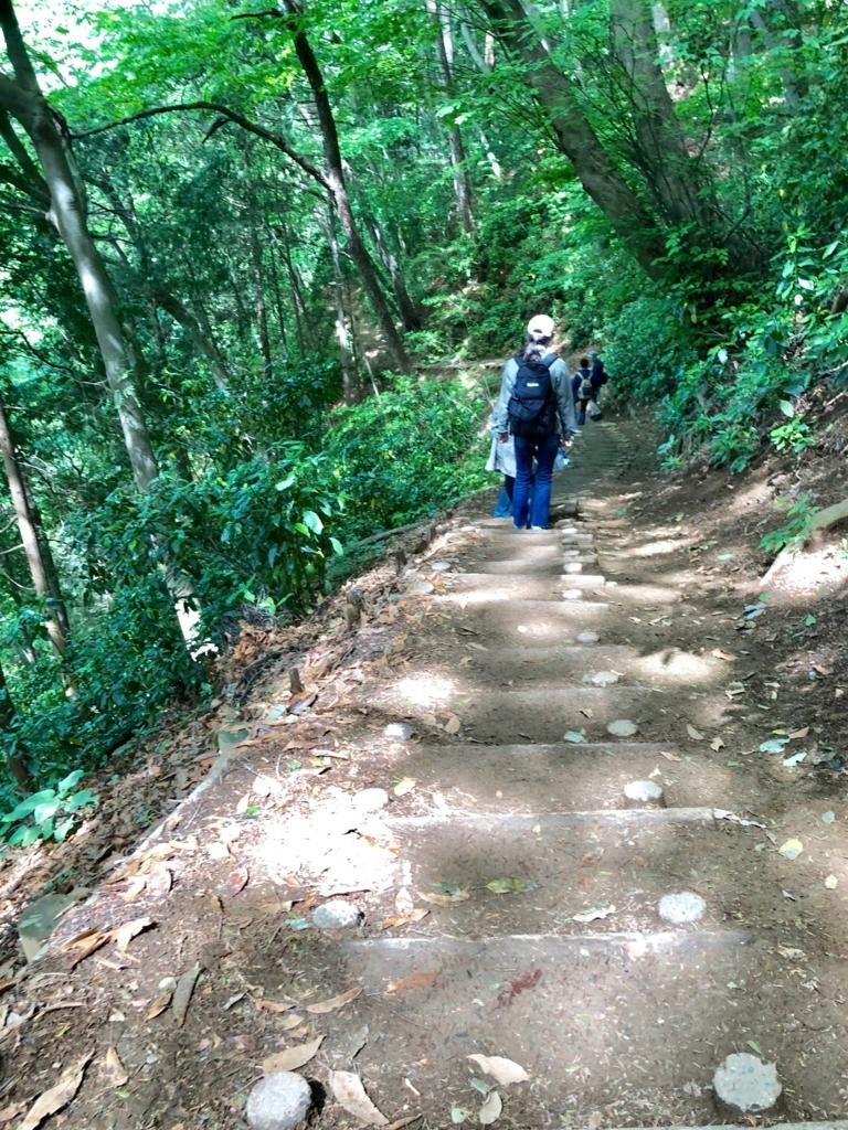 2018年5月 高尾山 周遊コース 2号路 観光客もたくさん