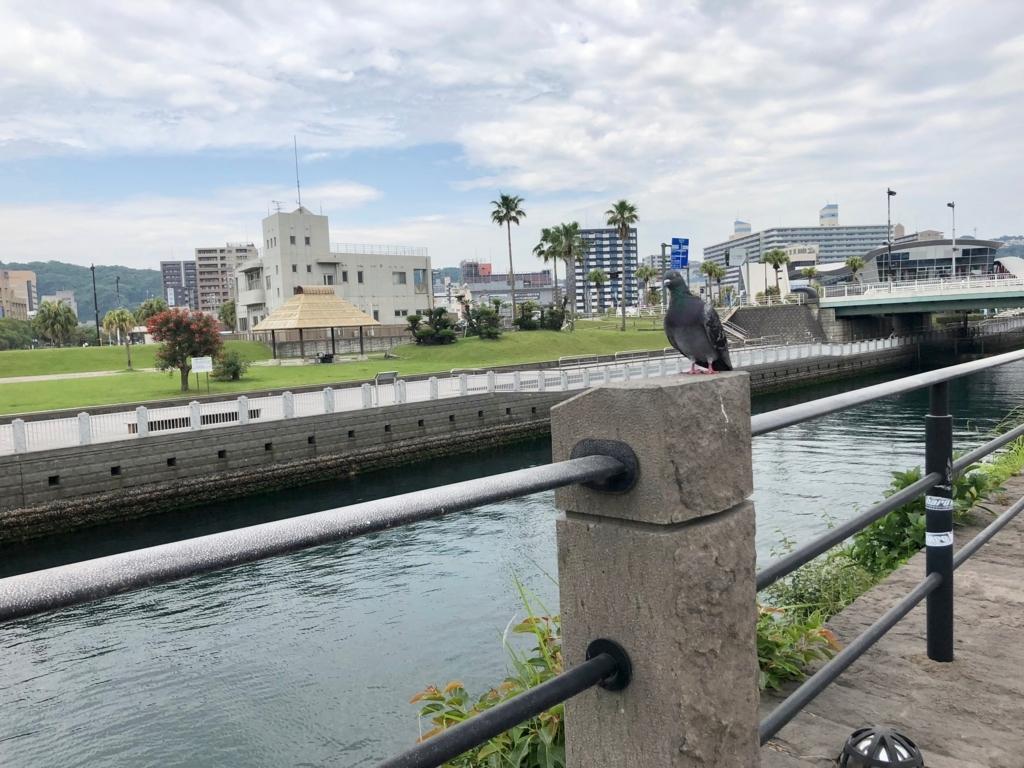 2018年5月 鹿児島ウォーターフロントパーク いくつかの東屋