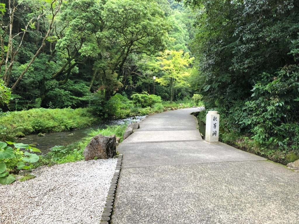 山口県秋吉台国定公園「秋芳洞」への 緑豊かな 小道