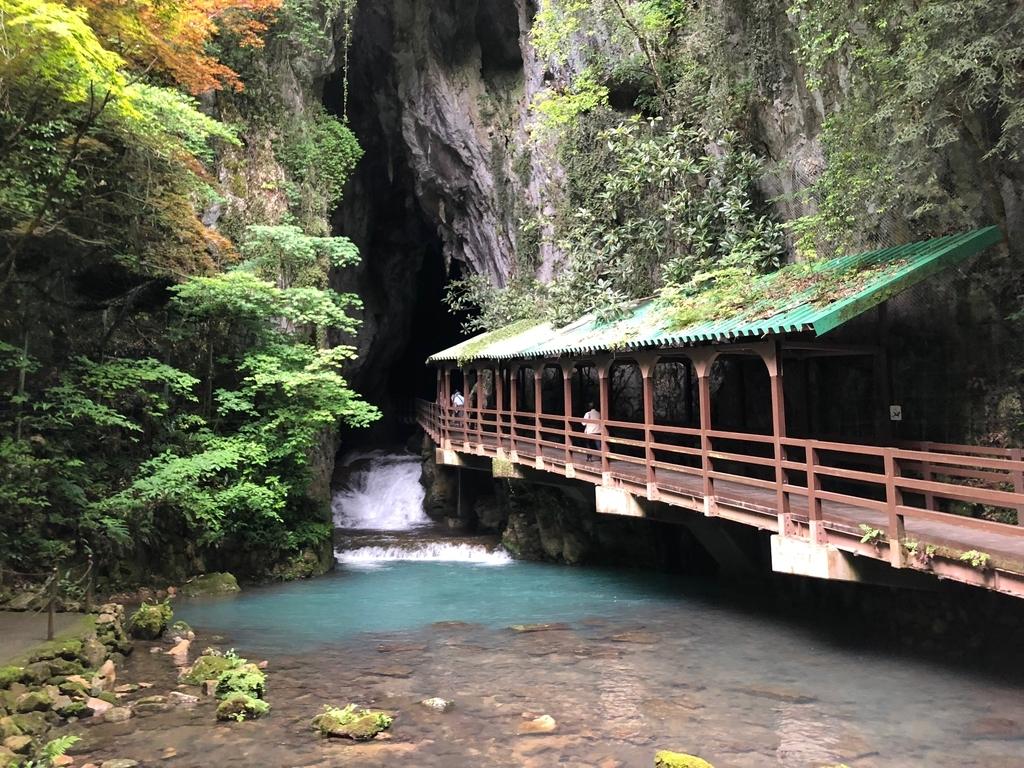 山口県秋吉台国定公園「秋芳洞」入り口 高い天井 多い水量