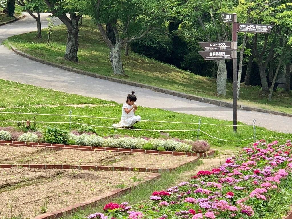 山口県 宇部市 「ときわ公園」たくさんの花壇