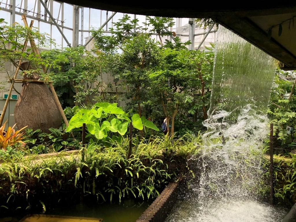 山口県 宇部市 「ときわ公園」ときわミュージアム 世界を旅する植物園 温室