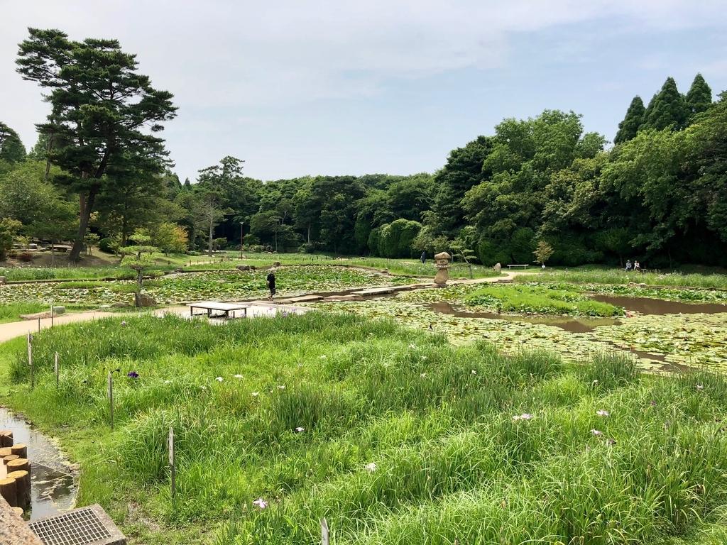 山口県 宇部市 「ときわ公園」たくさんの苑