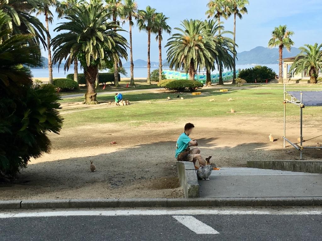 うさぎ島(大久野島)「休暇村」前グラウンド