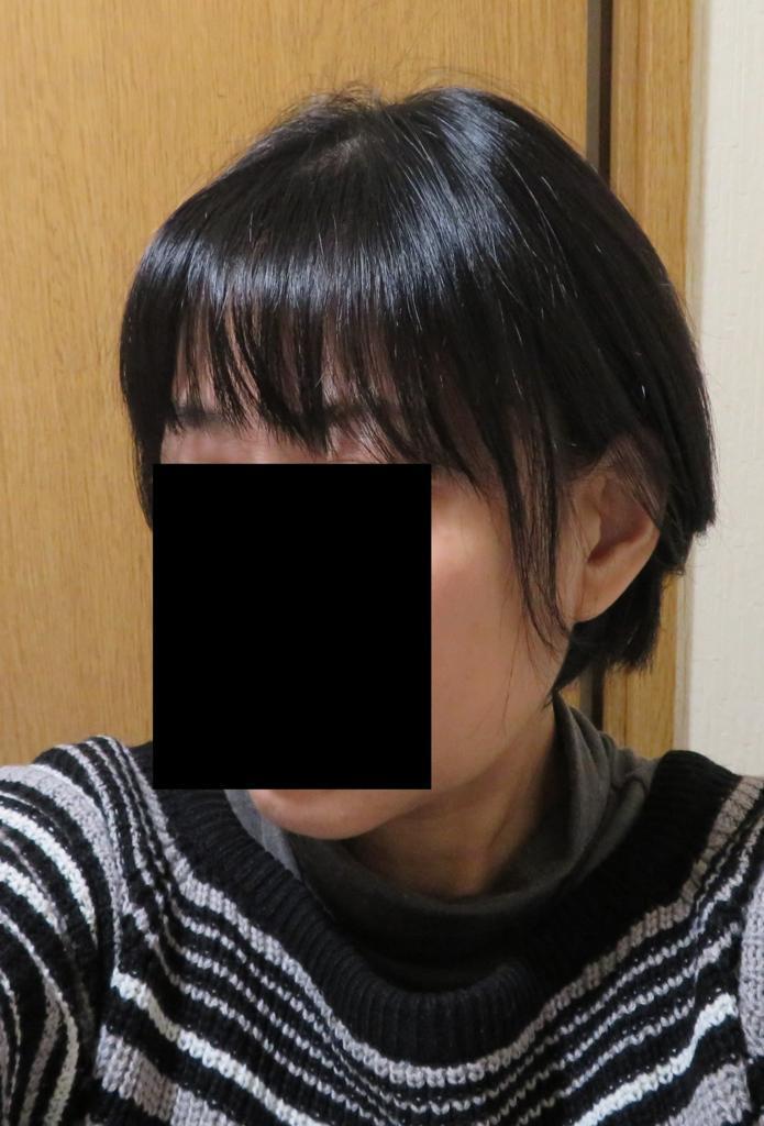 f:id:rararutan:20171120153808j:plain