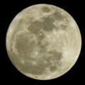 [moon] 月 20110319