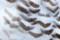 (4) 猛禽類 シロフクロウ 羽根 ( 等倍切り出し )